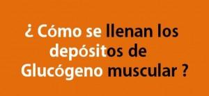 Depósitos de Glucógeno Muscular