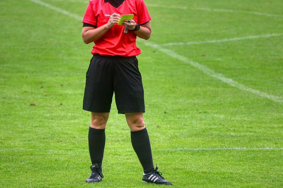 En qué se parecen un árbitro de fútbol y un camaleón